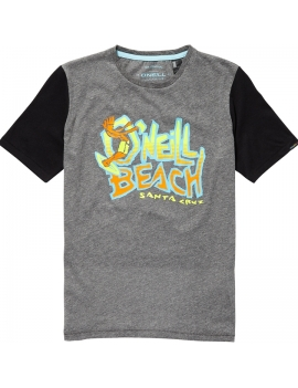 T-Shirt  Oneill  Laid Back