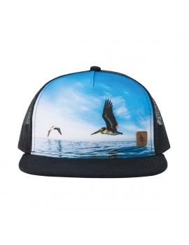 FLYBY HAT