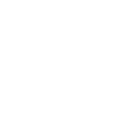logo-zylyz-reversed.png